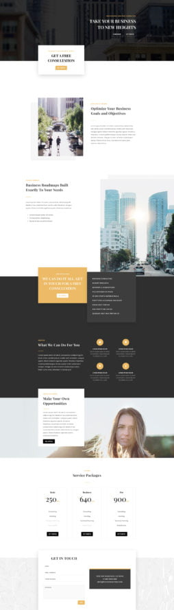 business-consultant-landing-page-254x890